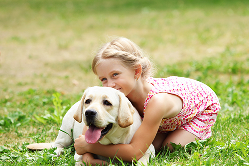Little girl hugging Labrador lying on grass