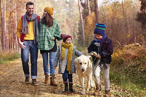 Family walking with Labrador on dirt track
